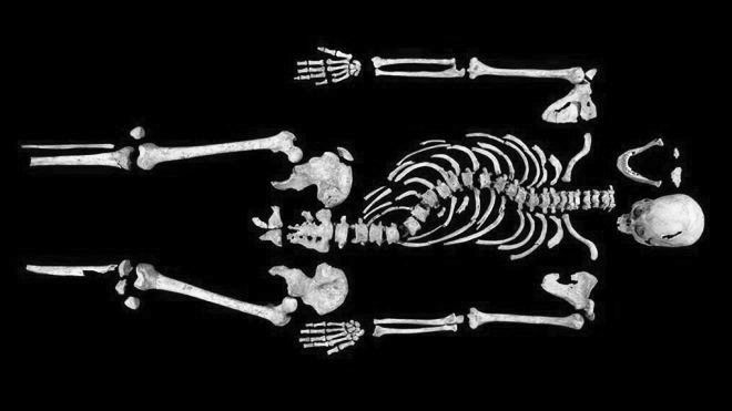 King Richard III's remains discovered