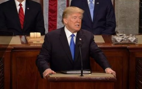 President Donald Trump during his 2018 State of the Union Address