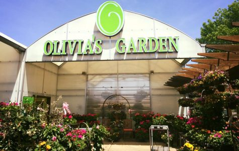 Olivia's Garden, a family-owned greenhouse in the Beverly Neighborhood of Chicago, founded in 1992